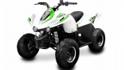 6829-lem-quad-big-foot-110cc-bila-zelena-0-jpg-big.jpg